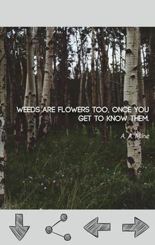 Gardening Quotes apk screenshot