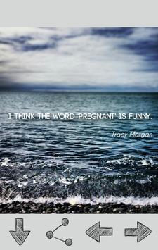 Funny Quotes poster