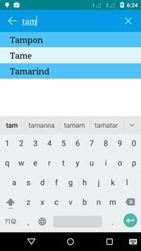 English to Tamil and Hindi apk screenshot