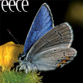 BUTTERFLIES - The book icon