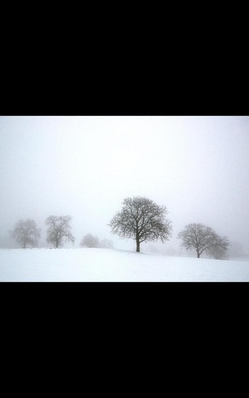 snowfall live wallpaper download apk