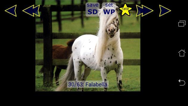 Little Pony Families & Breeds apk screenshot