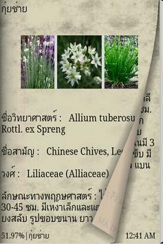 สมุนไพรไทย รักษาโรค apk screenshot