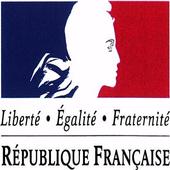 Service-public.fr icon
