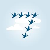 7Geese - OKRs icon