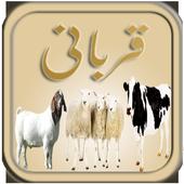 Qurbani - Eid ul Azha icon