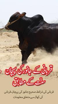 Qurbani kay janwar ki pehchan poster