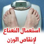 استعمال النعناع لإنقاص الوزن icon