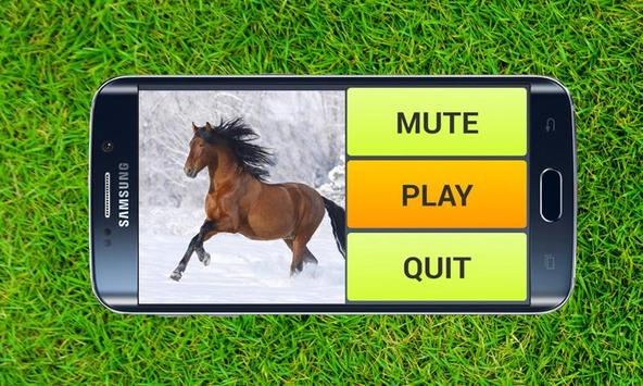 Free Horse Puzzles poster