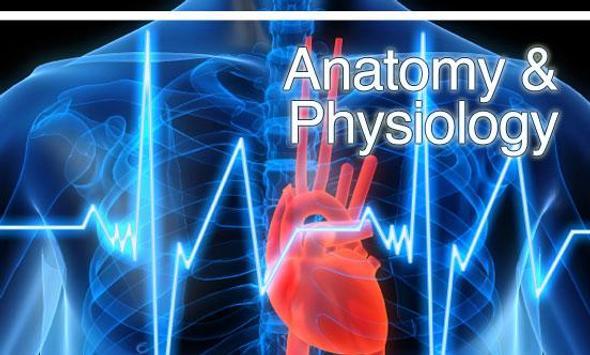 Human Anatomy,Physiology Wiki poster