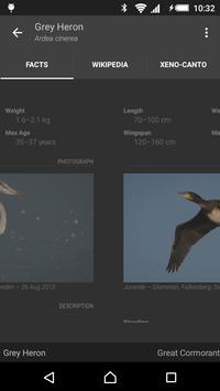 Free Guide: Nordic Birds apk screenshot