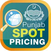Punjab Spot Pricing icon