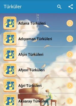 Türküler poster