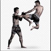 Muay Thai Roundhouse Kick icon