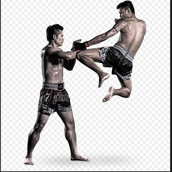 Muay Thai Roundhouse Kick poster