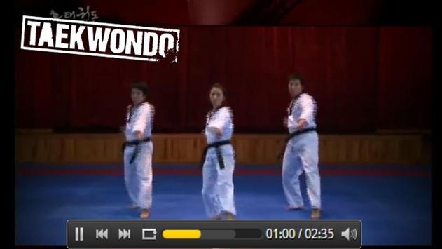 Taekwondo free training apk screenshot
