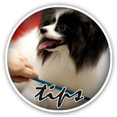 Tips For Dog Grooming icon