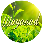 Wayanad Tourism icon