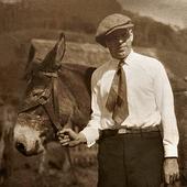 Burros e pastores icon