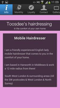 Toosdee's hairdressing poster