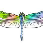 Dragonfly Pediatric OT icon