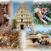 Complete India & Asia icon