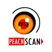 Peach Scan Ticket Validator icon