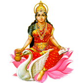 Gayatri Chalisa Hindi + Audio icon
