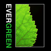 Evergreen Building Systems icon