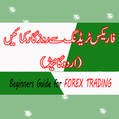 Forex Trading in Urdu icon