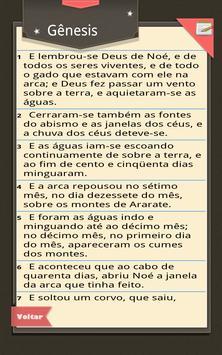 Bíblia Teen apk screenshot