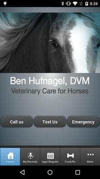 Horse Doc poster
