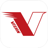 VISION GROUP icon