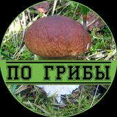 По грибы icon