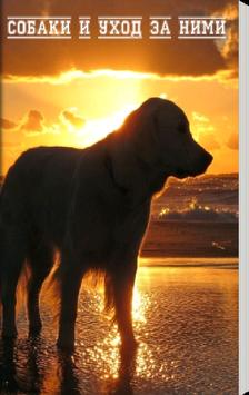 Собаки и уход за ними poster