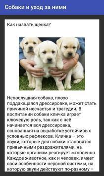 Собаки и уход за ними apk screenshot