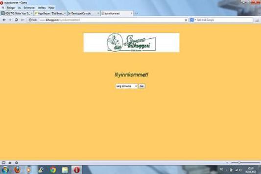 Bilhogg.com apk screenshot
