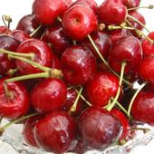Die Obstbau App icon