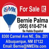 Re/Max - Bernie Palma icon