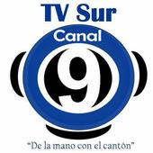TV SUR CANAL 9 DE COSTA RICA icon