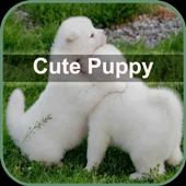 Cute Puppy Wallpaper icon
