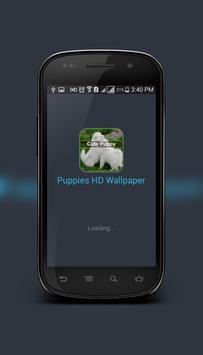 Cute Puppy Wallpaper apk screenshot