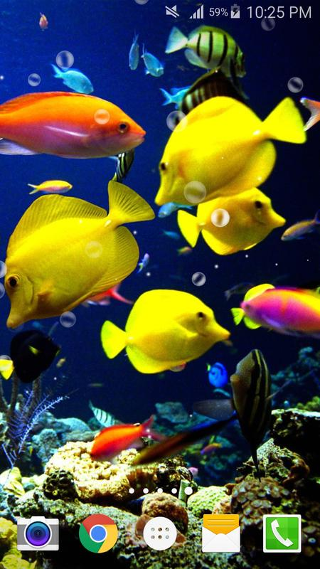Ocean Fish Live Wallpaper Free Apk Download Free