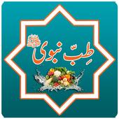 Tib E Nabvi icon