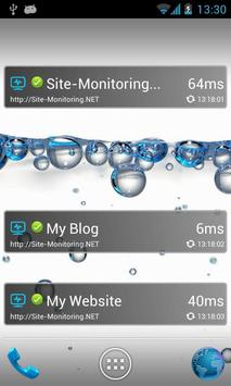 Website Monitoring Widget poster