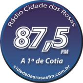 RCR 87.5 FM icon