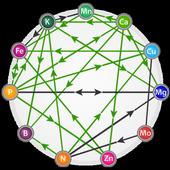 Crop Nutrient Interactions icon