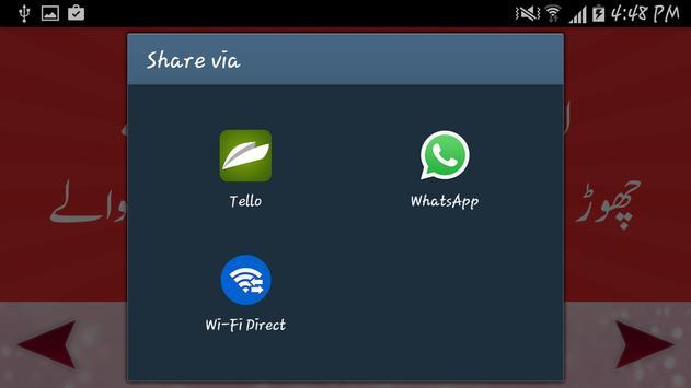 Adabi Shair-o-Shairy apk screenshot