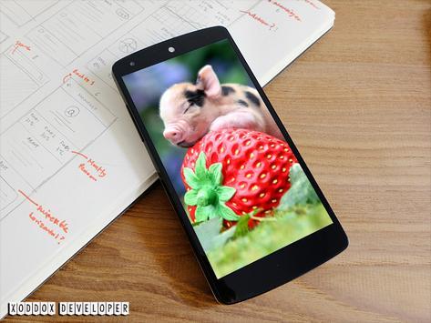 Fruits And Berries Wallpapers apk screenshot