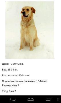 Породы собак apk screenshot